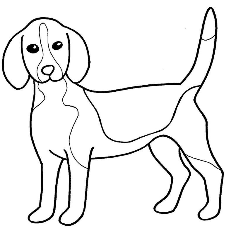 animais para pintar desenho de cachorro para colorir desenho