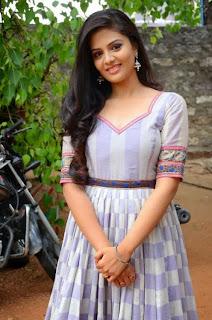 Actress Srimukhi Pictures in Long Dress at Dhana Lakshmi Talupu Tadithe Press Meet  22
