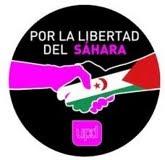 UPyD y Sáhara