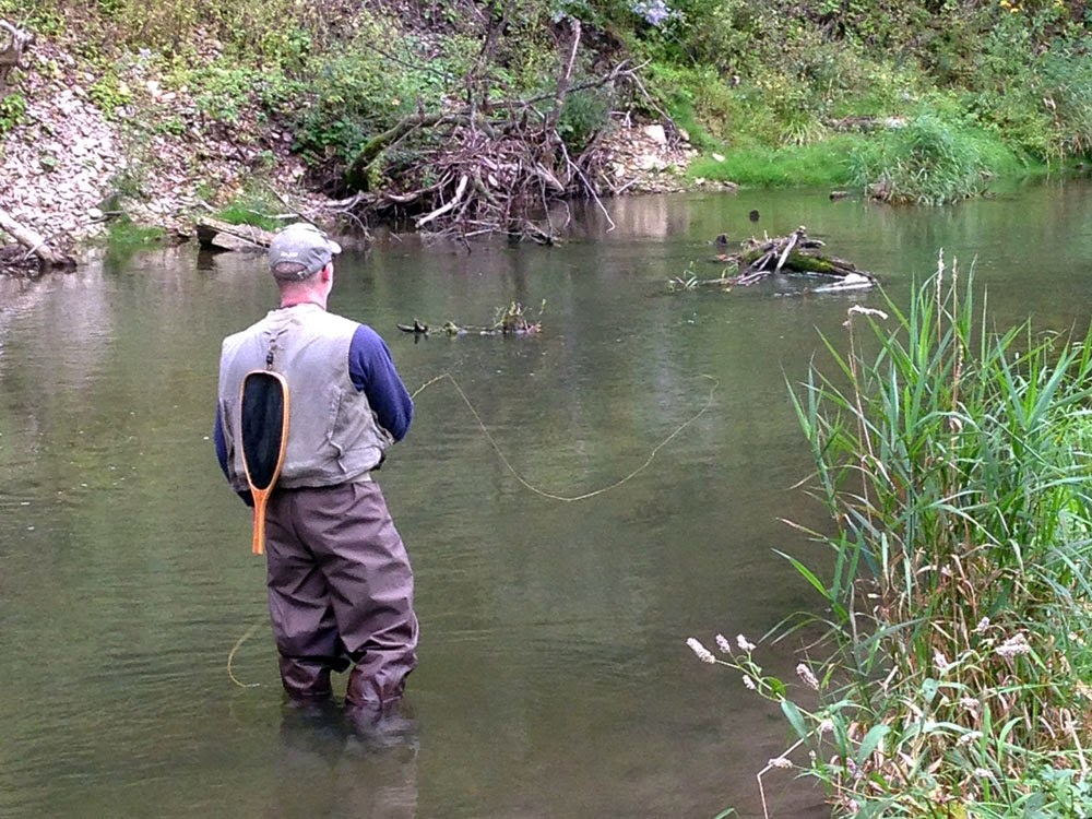 Casting The Test fiberglass fly rod by Hardy on a Southeast Minnesota trout stream.