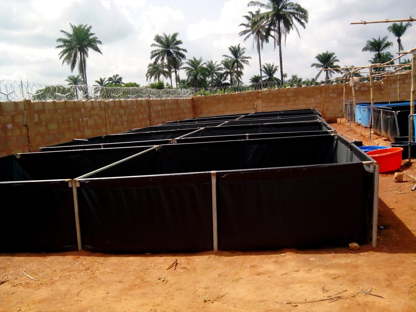 How To Setup A Mobile Pond In Nigeria Kingsway Agro Services