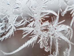 Ulv - Śnieg