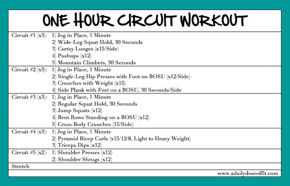 Daily Dose of Fit: One Hour Circuit Workout, Weekend Recap
