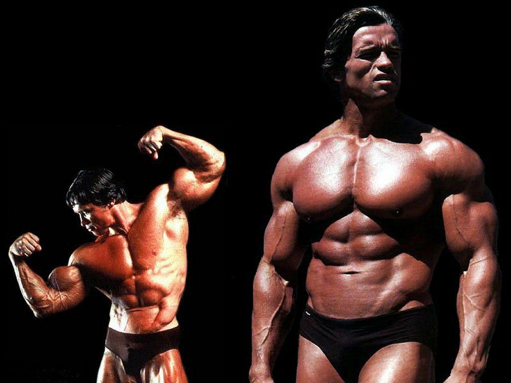 Arnold Schwarzenegger Wallpapers ~ Top Best HD Wallpapers ...