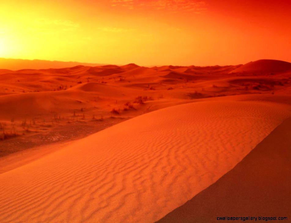 1024x768 Desert sunrise desktop PC and Mac wallpaper