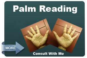 Palm Reading Service