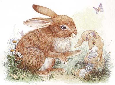 Realistic rabbit illustration - photo#8