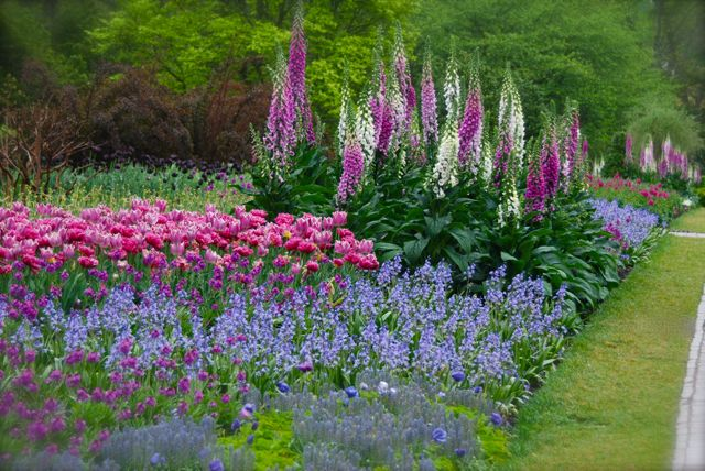 Longwood's sumptuous long border displays for spring.