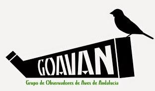 Grupo de Observadores de Aves de Andalucía