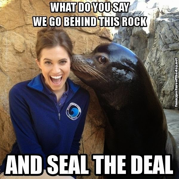 Go Behind This Rock And Seal The Deal Funny Allison Williams Meme