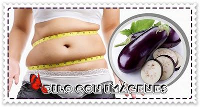 La mejor dieta para adelgazar sin efecto rebote las principales