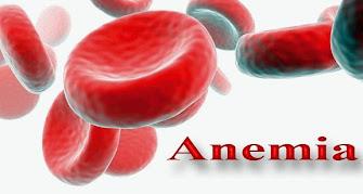 obat herbal kurang darah