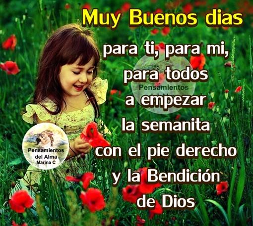 Muy Buenos dias para ti, para mi, para todos !!!