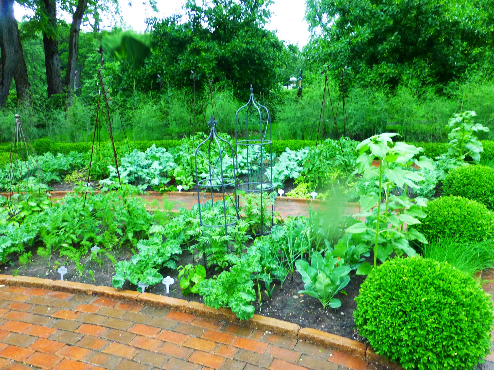 Romancing the home the most beautiful potager and pool area for Garden 7 pool