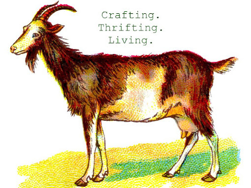 Little Fainting Goat