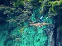 Demi Feng Sui Positif, Tebing Tinggi di Cat Hijau