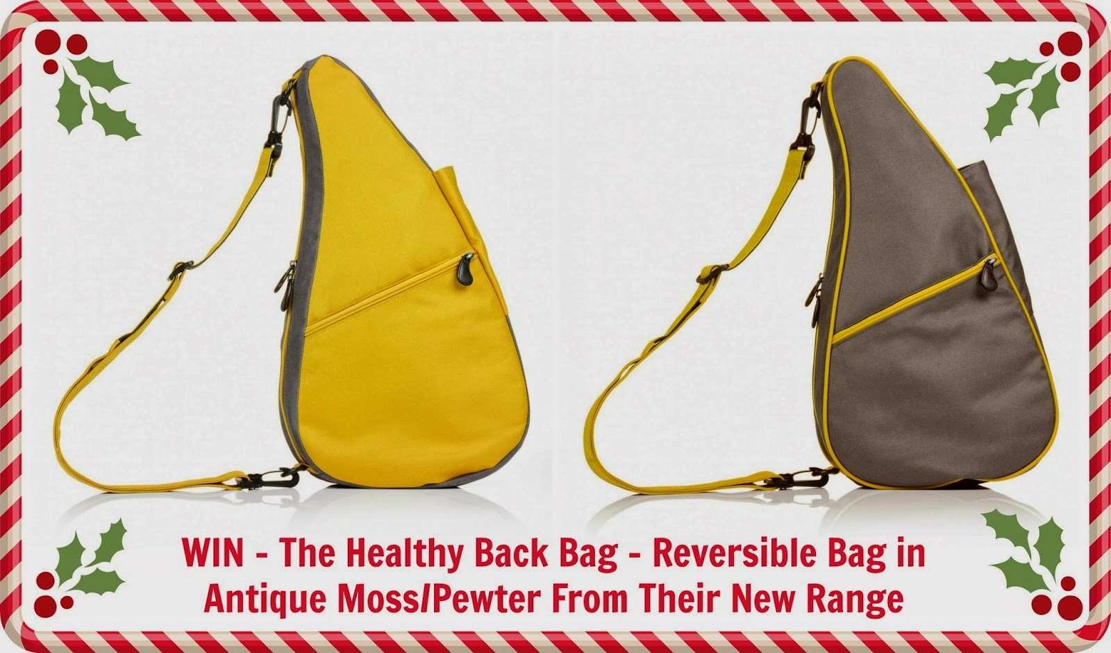 healthy-back-bag-reversible
