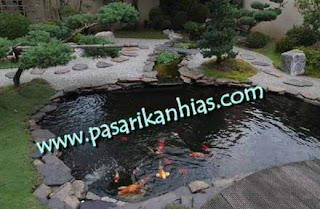 Ikan Hias Untuk Kolam Taman