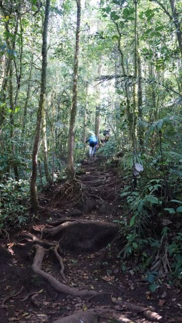 Hiking: Gunung Kerinci, Indonesia (Part 2)