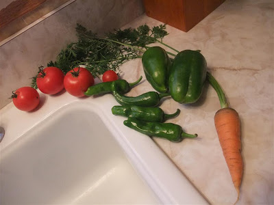 vegetables from my backyard garden, month