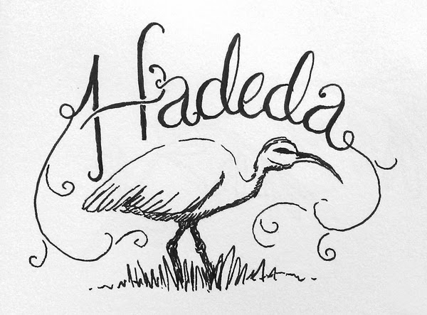 Happinessis... hand drawn hadeda illustration and hand lettering