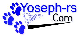 yoseph-rs.com