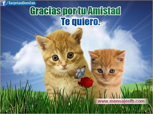 Mensajes bonitos de amistad para facebook - Mensajes para Amor ...