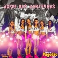 CD Seleção Só Músicas Top 2014