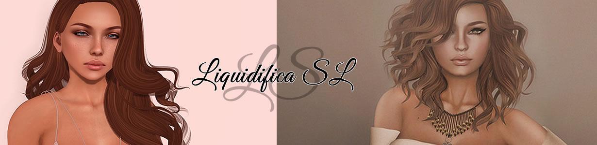 Liquidifica Sl