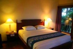 http://mount-bromotour.blogspot.com/2014/11/daftar-hotel-terdekat-dengan-gunung.html
