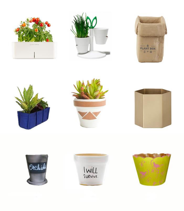 pots et cache pots pour un jardin int rieur blog d co. Black Bedroom Furniture Sets. Home Design Ideas