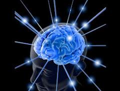 Equilíbrio Neural