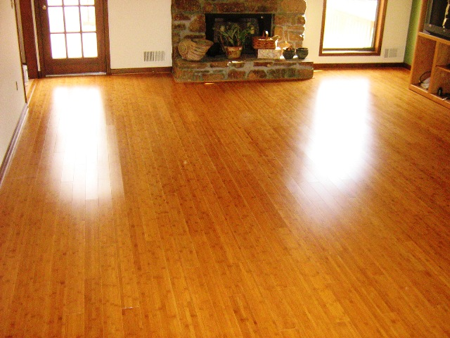Bamboo Hardwood Floors7