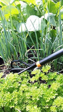 puutarha- ja pihatyöt | fiskars