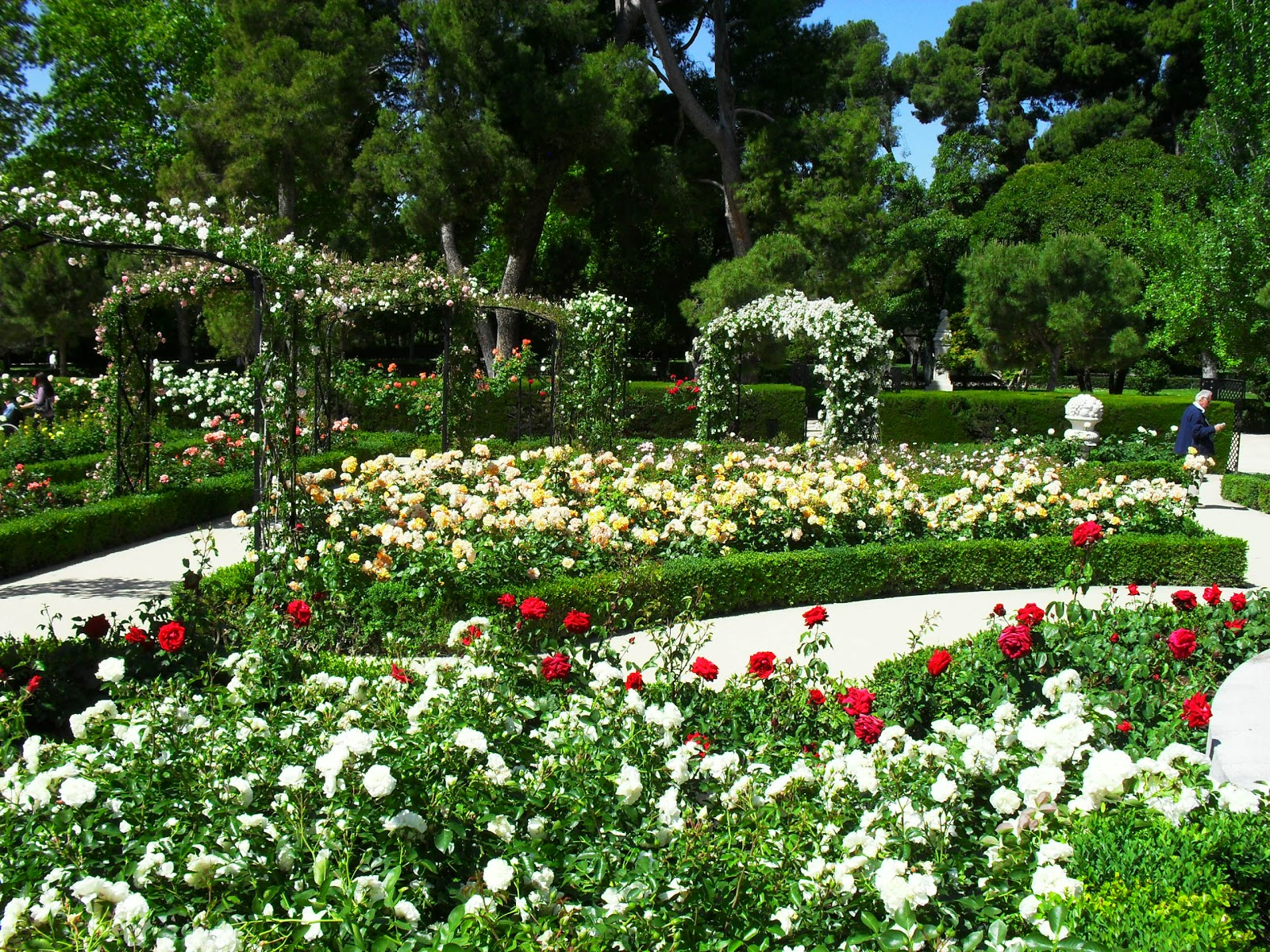 Arte y jardiner a el jard n de rosas for Modelos de jardines sencillos