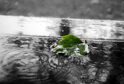 ink rain