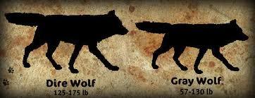 Dire wolf vs wolf - photo#4