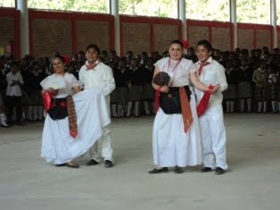 "Baile Regional ""La iguana"""