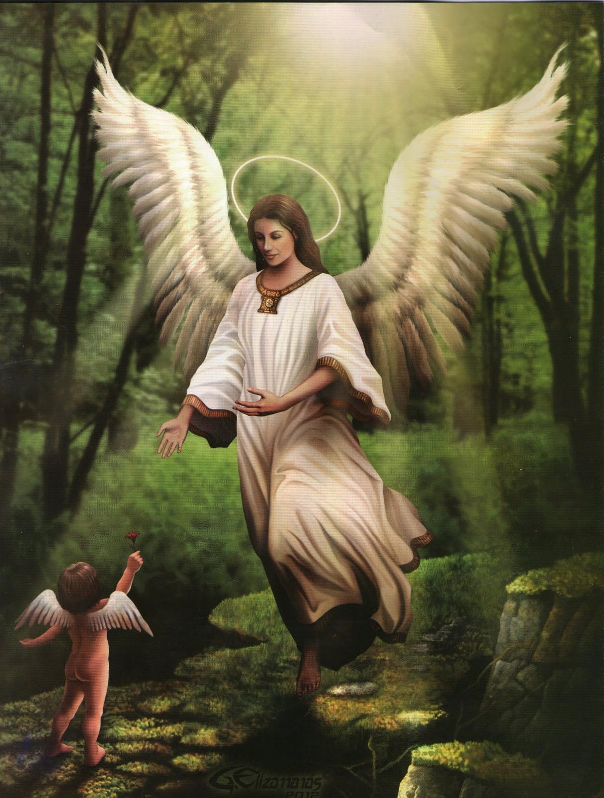 foto angel querubin: