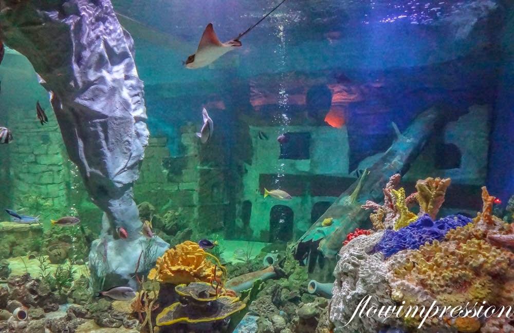 Unterwasser essen