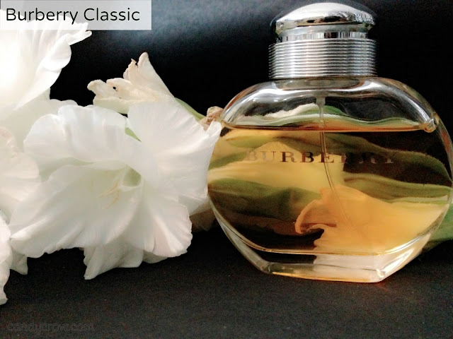 Burberry Classic Review