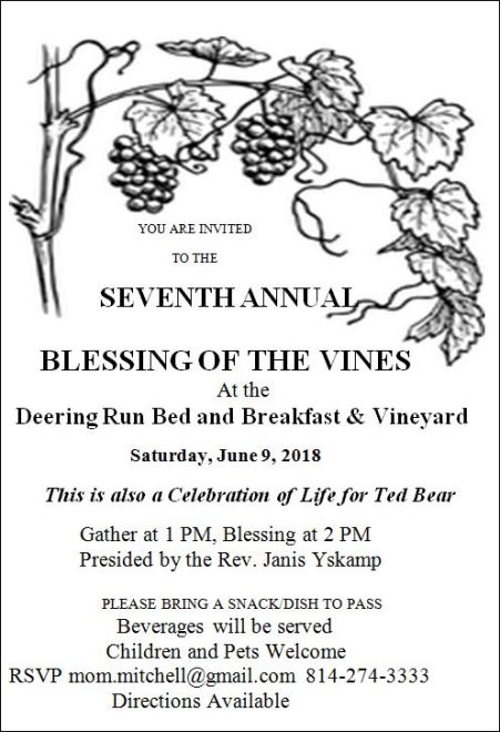 6-9 Blessing Of The Vines