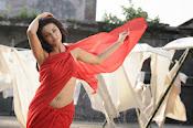Surveen Chawla Hot Photos-thumbnail-12