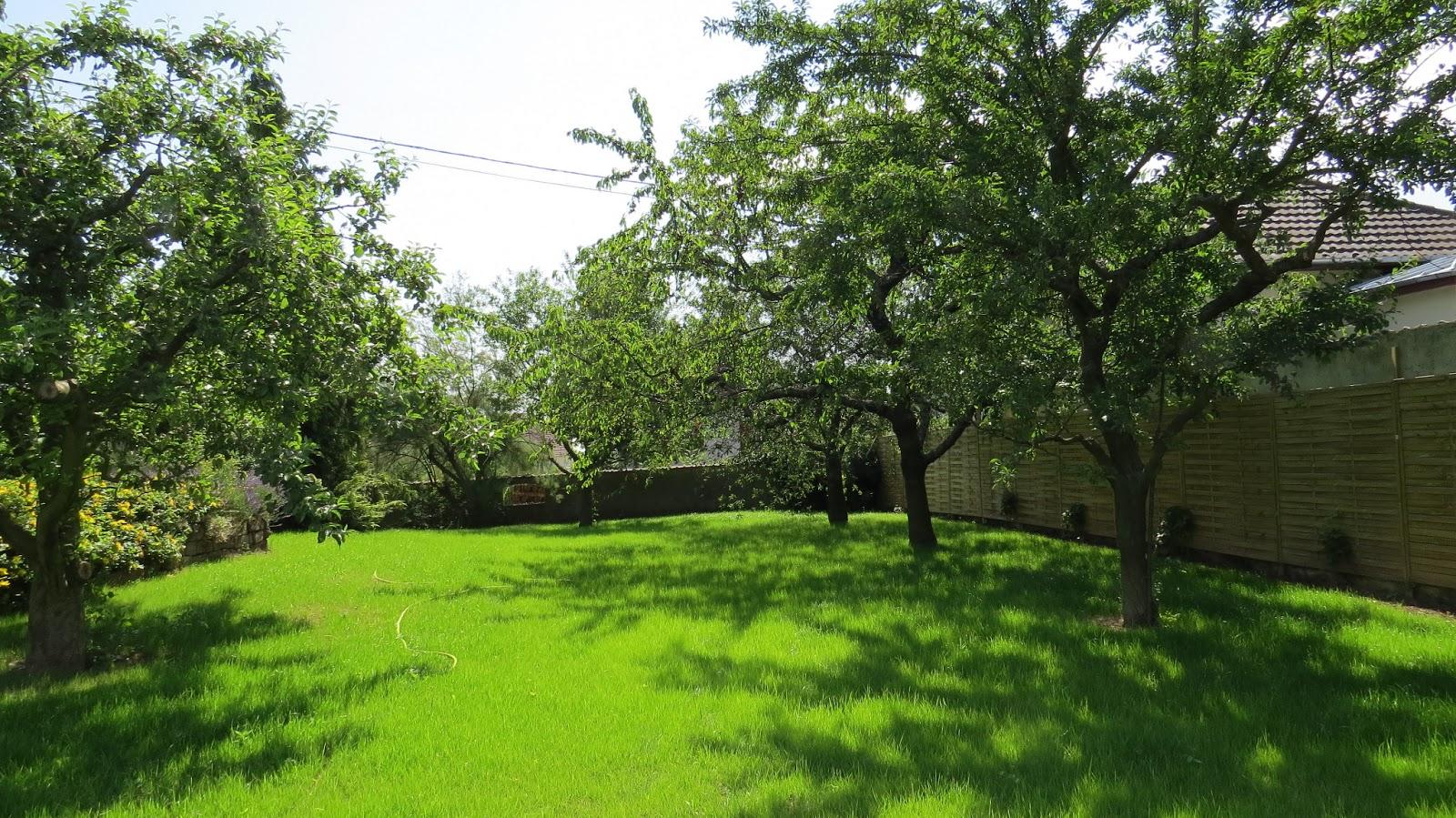 Jardin alsace vignoble for Ca vient du jardin