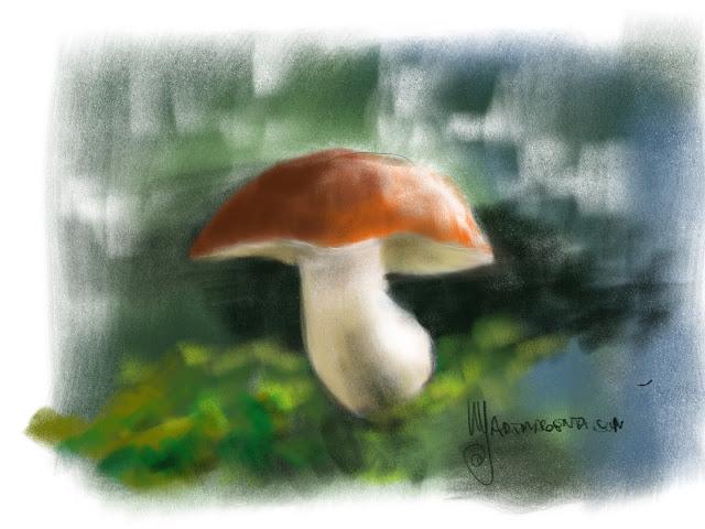 Mushroom by Artmagenta