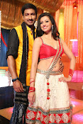 Hamsha Nandini Item Song in Loukyam-thumbnail-15