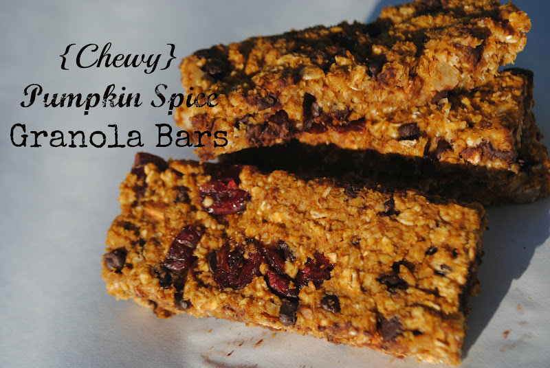 Craft Envy: Chewy Pumpkin Spice Granola Bars