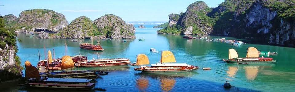 Halong travelling | Tour du lịch hạ long, Du thuyền vịnh hạ long, Tham quan Vịnh Hạ Long