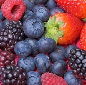 Makanan Kesahatan Payudara Anda
