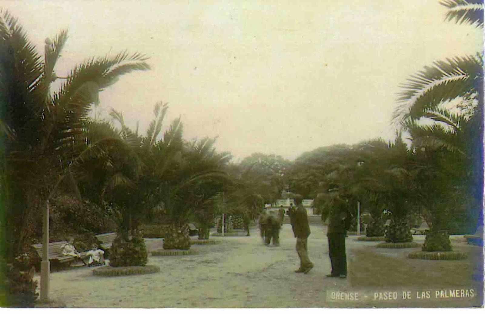 Ourense no tempo de colecci n las palmeras del posio for Jardin del posio ourense